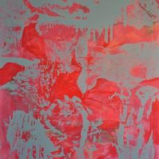 Millepora-Feuerkoralle, 150 x 250 cm